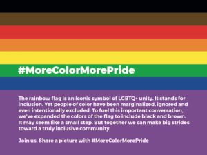 Rainbow Flag with black and brown stripes