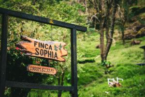 Finca Sophia Farm